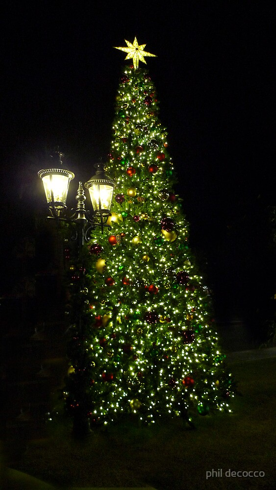 Holiday Lights by phil decocco