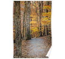 A Fall Walk Poster