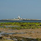 Coquet Island View by John Hallett