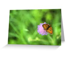 Brenthis ino orange butterfly  Greeting Card