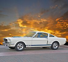 1966 Shelby Mustang G.T.350 by DaveKoontz