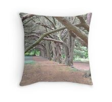Ancient Woodland, Ireland Throw Pillow