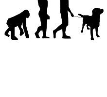 Dog Walking Evolution by kwg2200