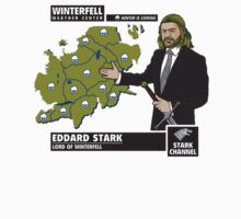 Game Of Thrones - Ned Stark Weather Winter Is Coming by CandyArcade
