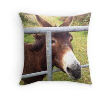 Donkey in Kerry, Ireland Throw Pillow