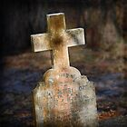 Graveyard Adornments #07  Dappled Light by Malcolm Heberle