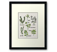 Herb Framed Print