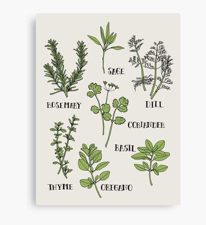 Herb Canvas Print