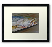 Colors Of A Trout Framed Print