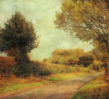 Country Road 2 by JulieCoe
