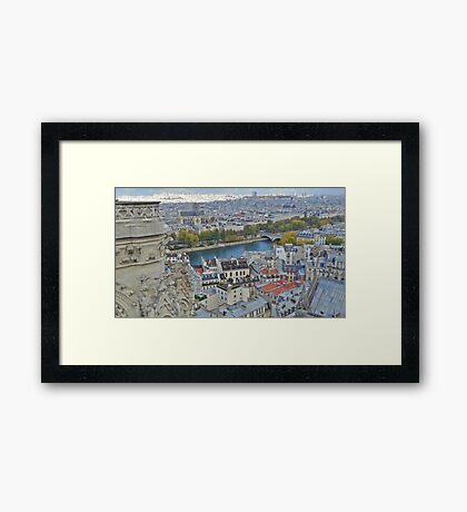 Paris Rooftops from Notre Dame Framed Print