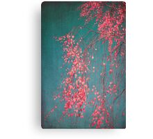 whispers of pink Canvas Print