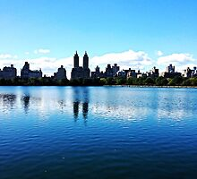 New York, Central Park  by AlexFauth