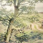 Under The Greenwood Tree by patrixpix