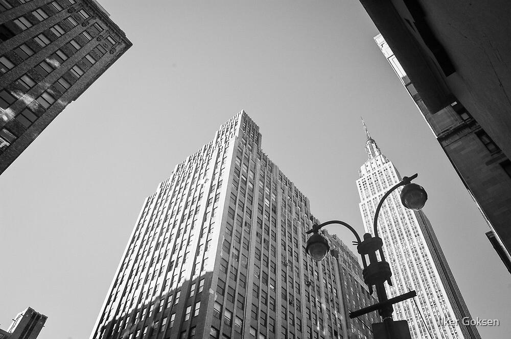 Empire State Building, New York City by Ilker Goksen
