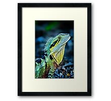 Rainbow Dragon.... Framed Print