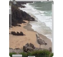 Coumeenole Beach, Dingle Peninsula, Ireland iPad Case/Skin