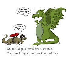 Komodo Dragons Photographic Print