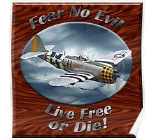 P-47 Thunderbolt Fear No Evil Poster