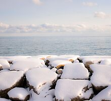Winter shore of lake Ontario by Elena Elisseeva