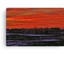 Splendor in the sky Canvas Print