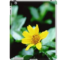 Two stunning & amazing yellow flower ;) iPad Case/Skin