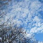 Cotton Wool Cloud Formations by kathrynsgallery