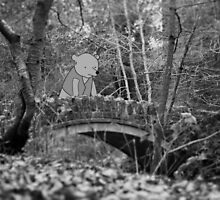 Bear Over Troubled Bridge.... or something by babushack