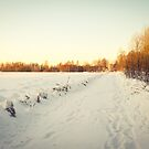 Winter wonderland by netza
