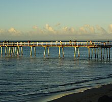 Hervey Bay Winter Afternoon by Alison Murphy