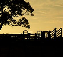 Stockyard Sunset by amimages