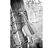 Violin Rural Photographic Print