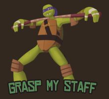 Donatello - Grasp My Staff by Freakorama