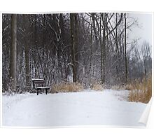 Winter Colors Poster