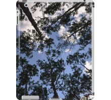 iPad Aspen Trees Case iPad Case/Skin