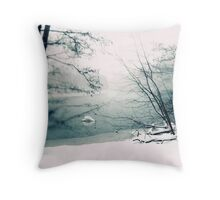 Zen Winter Throw Pillow