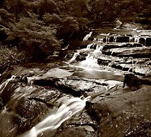 Leura Cascades, Blue Mountains by ttrendell77