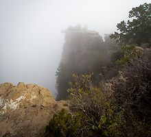 The Rare Grand Canyon covered with puffy fog by Jerome Obille