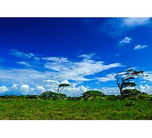 Dominican Countryside with clouds and blue skies Photographic Print