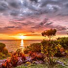 Beautiful Sunset Over the Ocean by LoungeV