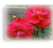Red Roses For My Love Canvas Print