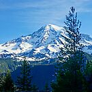 Rainier  by Harry Oldmeadow