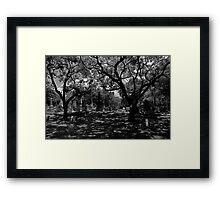 3A Framed Print