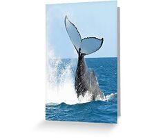 Fun Whale Crashing Greeting Card
