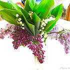 Four kinds of lilacs by MarianBendeth
