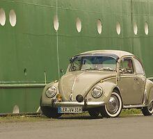 Beetle #7 by Stefan Bau