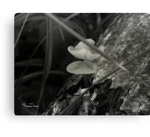 Mushroom - black and white Canvas Print