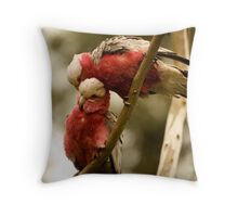 Galahs Preening Throw Pillow