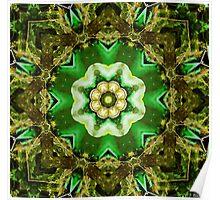 Nature's Kaleidoscope Poster