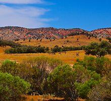 Flinders Ranges Pano by D-GaP